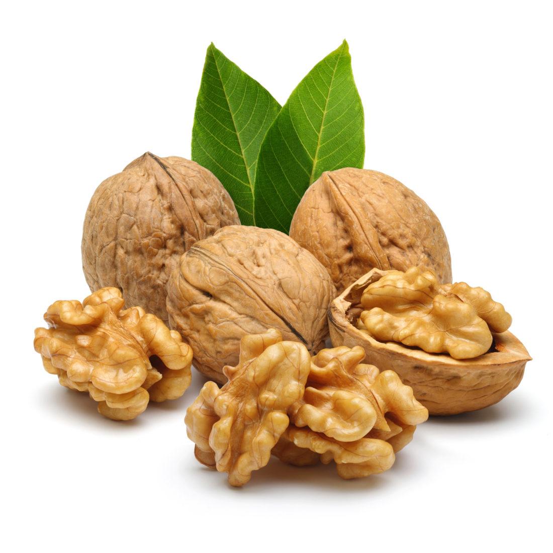 nuts_R_#2 (2)