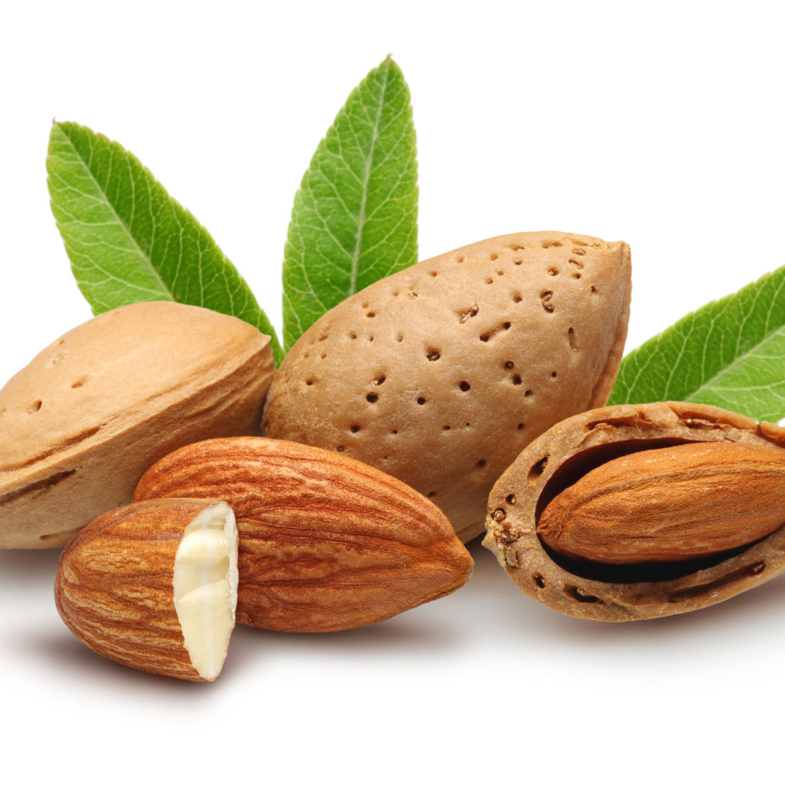 almonds, shelled almonds and leaves