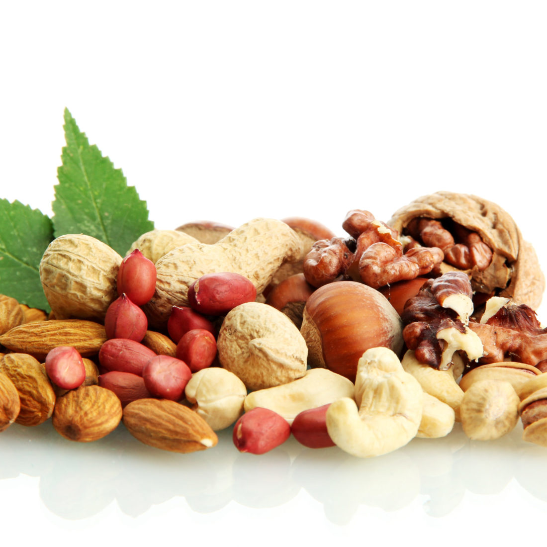 nuts_R_#2 (4)